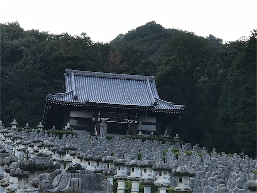 f:id:fujinosakura:20181027110043j:image