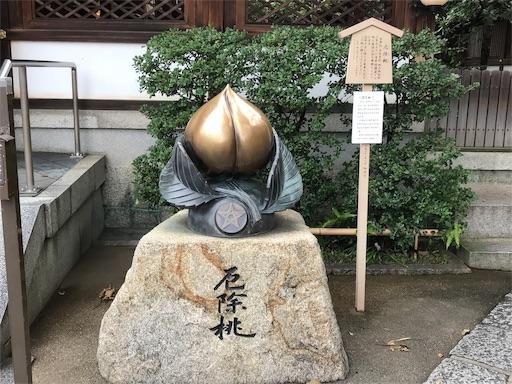 f:id:fujinosakura:20181028143043j:image
