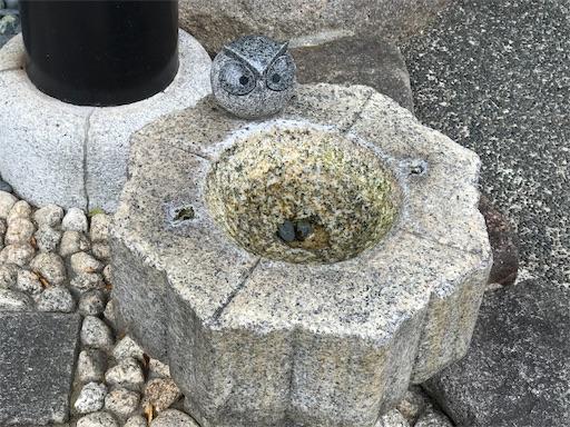 f:id:fujinosakura:20181029142416j:image