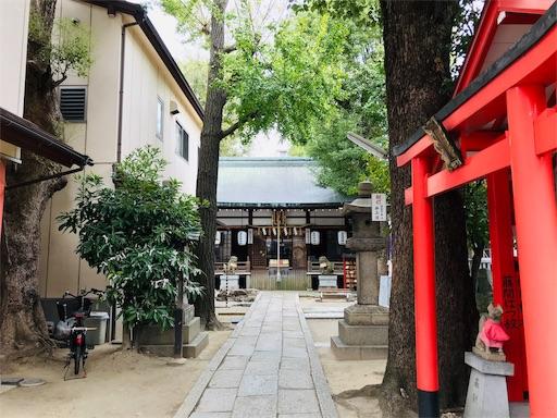 f:id:fujinosakura:20181102053830j:image