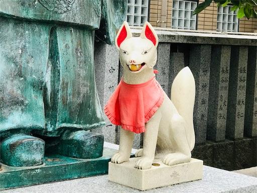 f:id:fujinosakura:20181102053848j:image