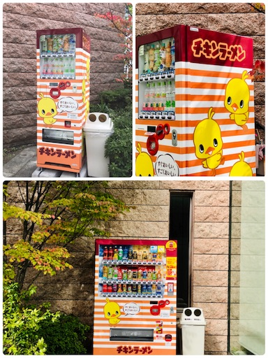 f:id:fujinosakura:20181111000402j:image