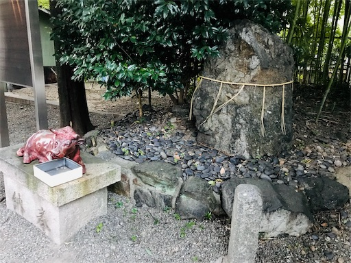 f:id:fujinosakura:20181111172509j:image