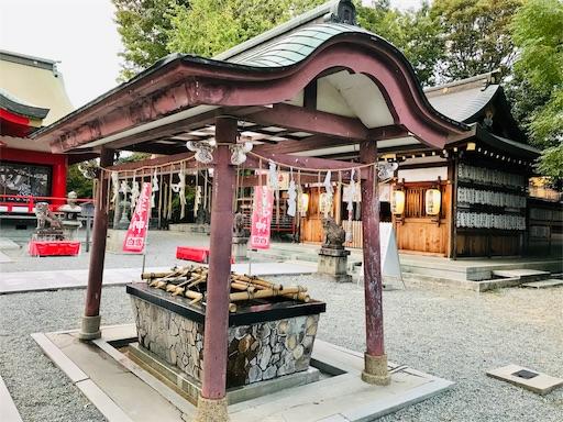 f:id:fujinosakura:20181111172530j:image