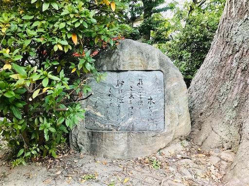 f:id:fujinosakura:20181111172553j:image