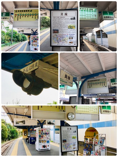 f:id:fujinosakura:20181114080851j:image