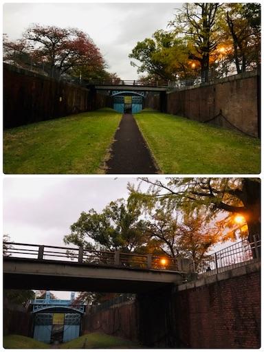 f:id:fujinosakura:20181114093206j:image