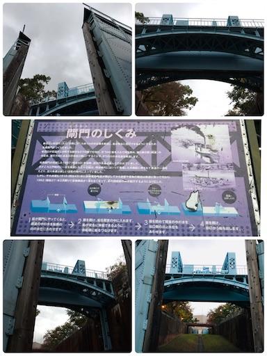 f:id:fujinosakura:20181114093208j:image