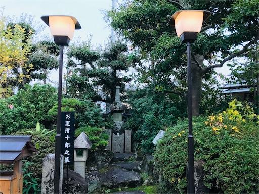 f:id:fujinosakura:20181116190128j:image