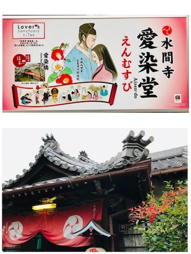 f:id:fujinosakura:20181116190141j:image