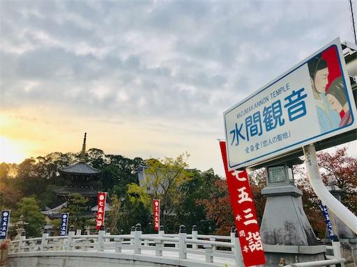 f:id:fujinosakura:20181116190144j:image