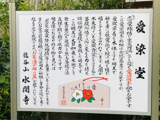 f:id:fujinosakura:20181116190150j:image