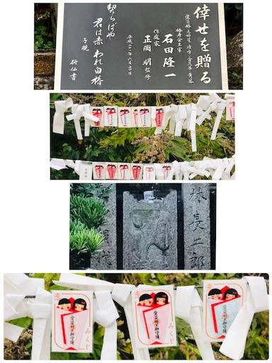 f:id:fujinosakura:20181116190653j:image