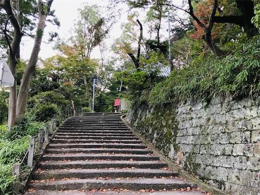 f:id:fujinosakura:20181116192347j:image