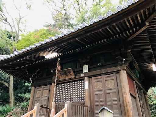 f:id:fujinosakura:20181116192353j:image