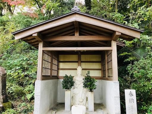 f:id:fujinosakura:20181116192419j:image