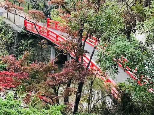 f:id:fujinosakura:20181116192422j:image