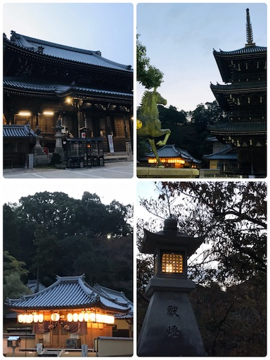 f:id:fujinosakura:20181116193934j:image