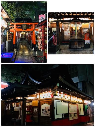 f:id:fujinosakura:20181117000707j:image