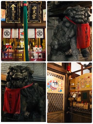 f:id:fujinosakura:20181117000724j:image