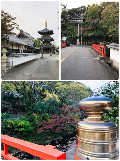 f:id:fujinosakura:20181117120418p:plain