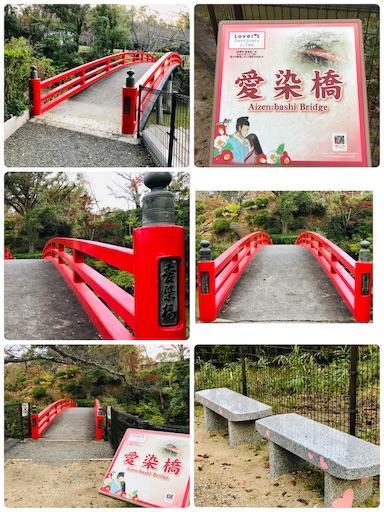 f:id:fujinosakura:20181117131101j:image