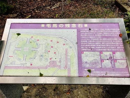 f:id:fujinosakura:20181118141646j:image