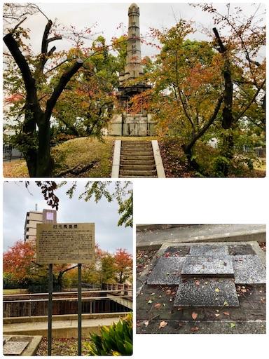 f:id:fujinosakura:20181118142059j:image