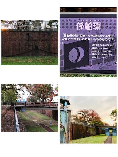 f:id:fujinosakura:20181119025516j:image