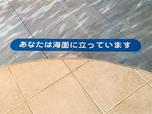 f:id:fujinosakura:20181119224055j:image