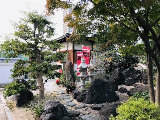 f:id:fujinosakura:20181122011857j:image