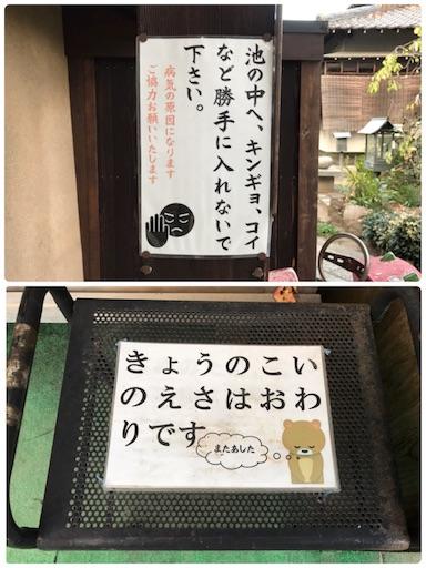 f:id:fujinosakura:20181122175213j:image