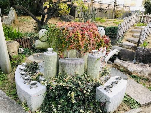 f:id:fujinosakura:20181123124724j:image