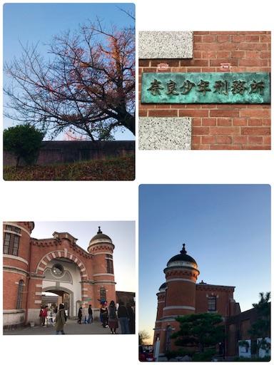 f:id:fujinosakura:20181125162052j:image