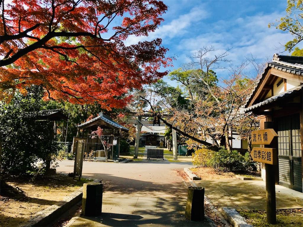 f:id:fujinosakura:20181129214846j:image