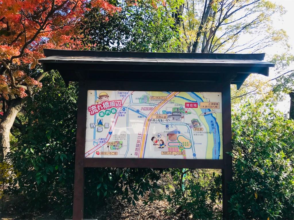 f:id:fujinosakura:20181129214907j:image