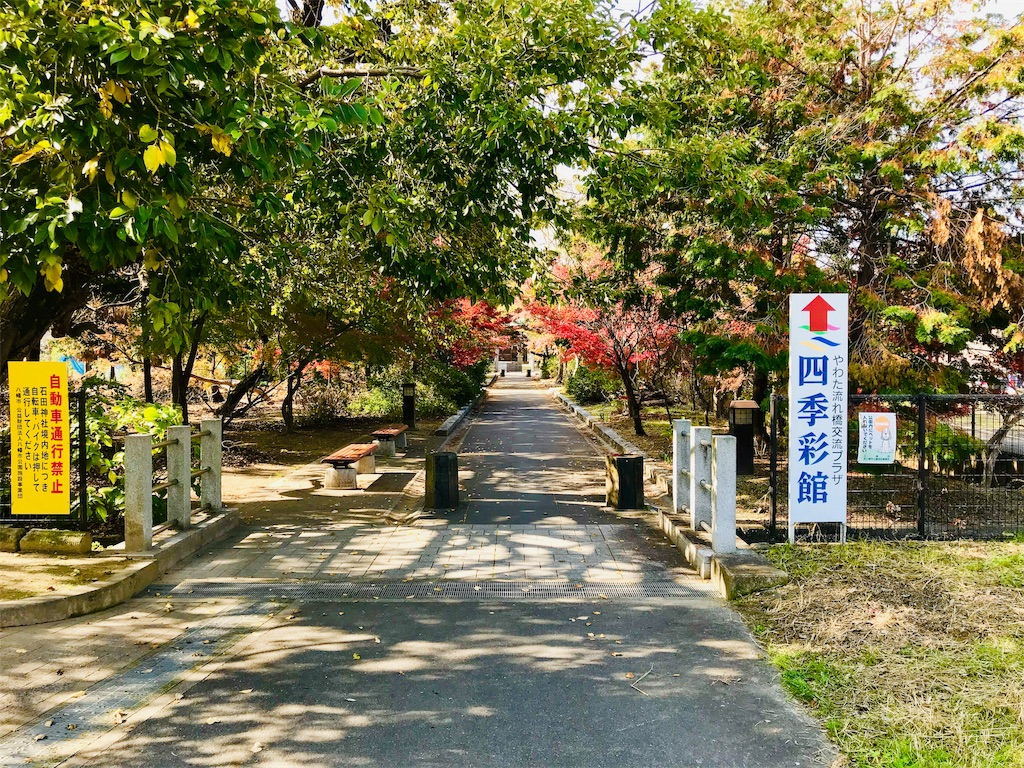 f:id:fujinosakura:20181129214917j:image