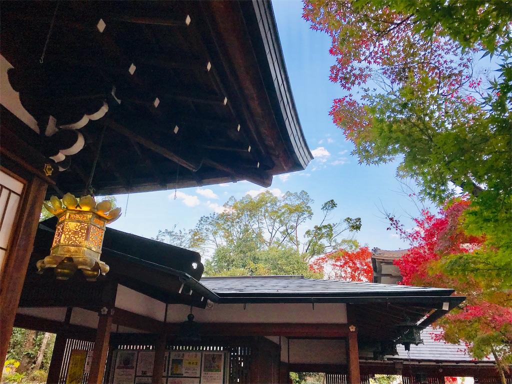 f:id:fujinosakura:20181130005346j:image