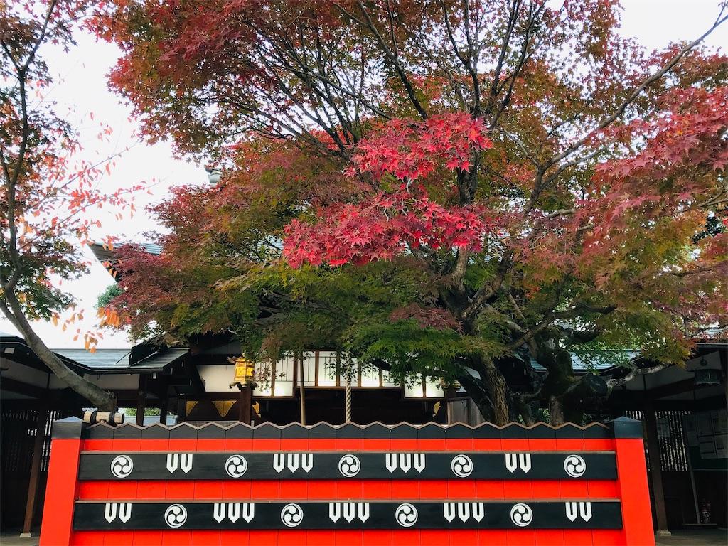 f:id:fujinosakura:20181130005354j:image