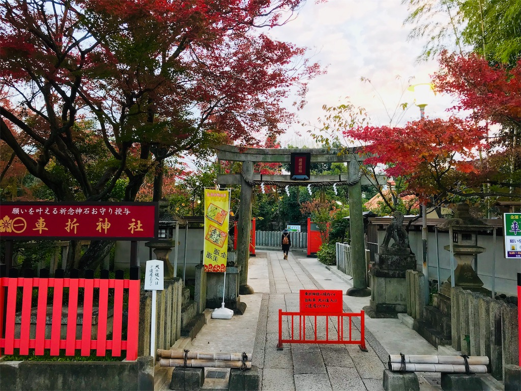 f:id:fujinosakura:20181130005422j:image