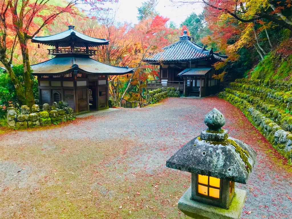 f:id:fujinosakura:20181202094323j:image