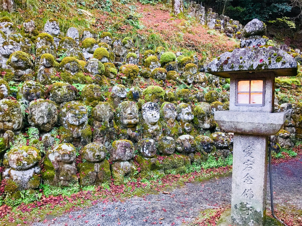 f:id:fujinosakura:20181202094335j:image
