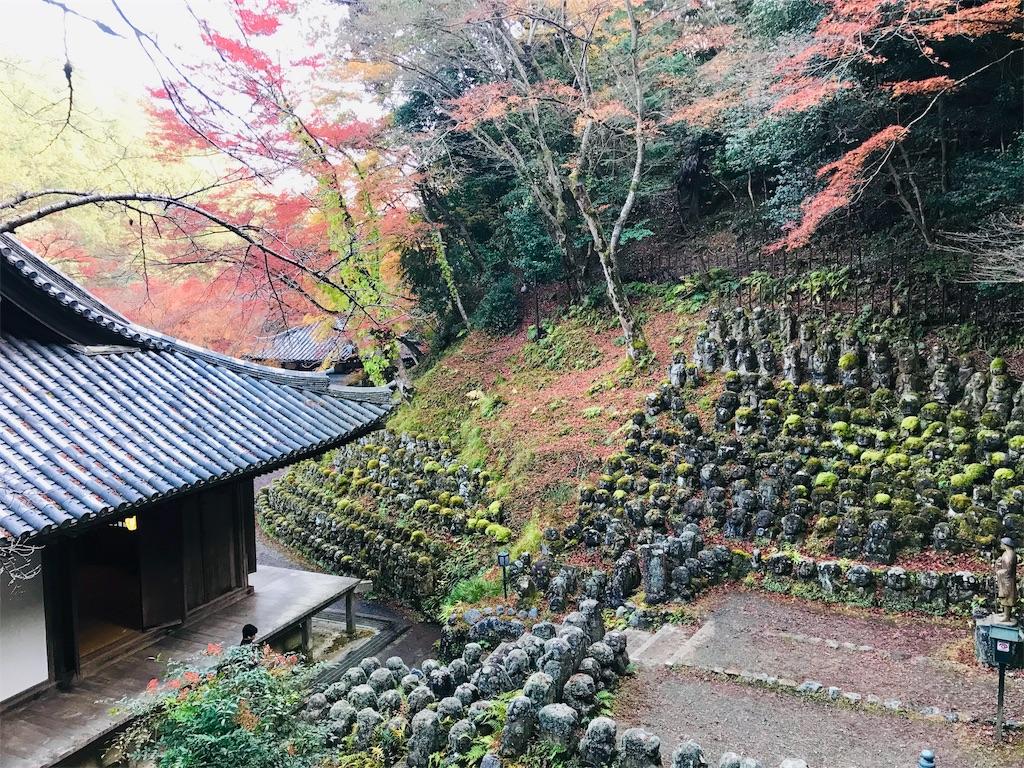 f:id:fujinosakura:20181202094342j:image