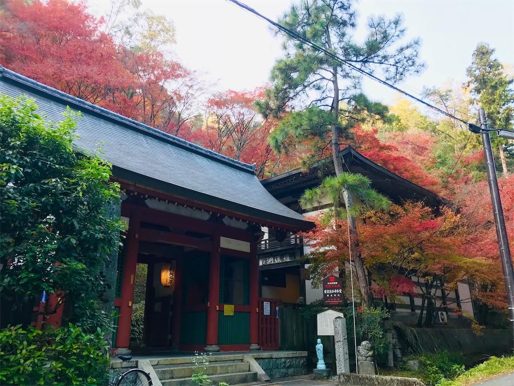 f:id:fujinosakura:20181202094353j:image