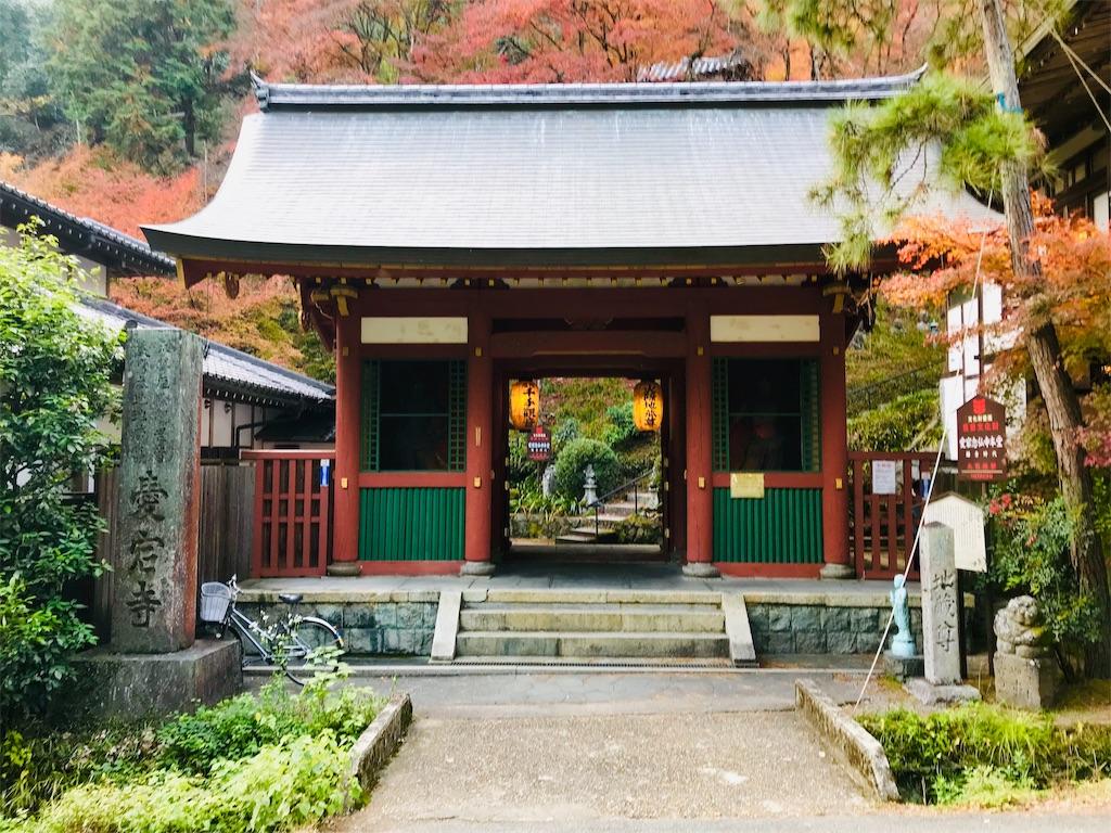 f:id:fujinosakura:20181202094417j:image