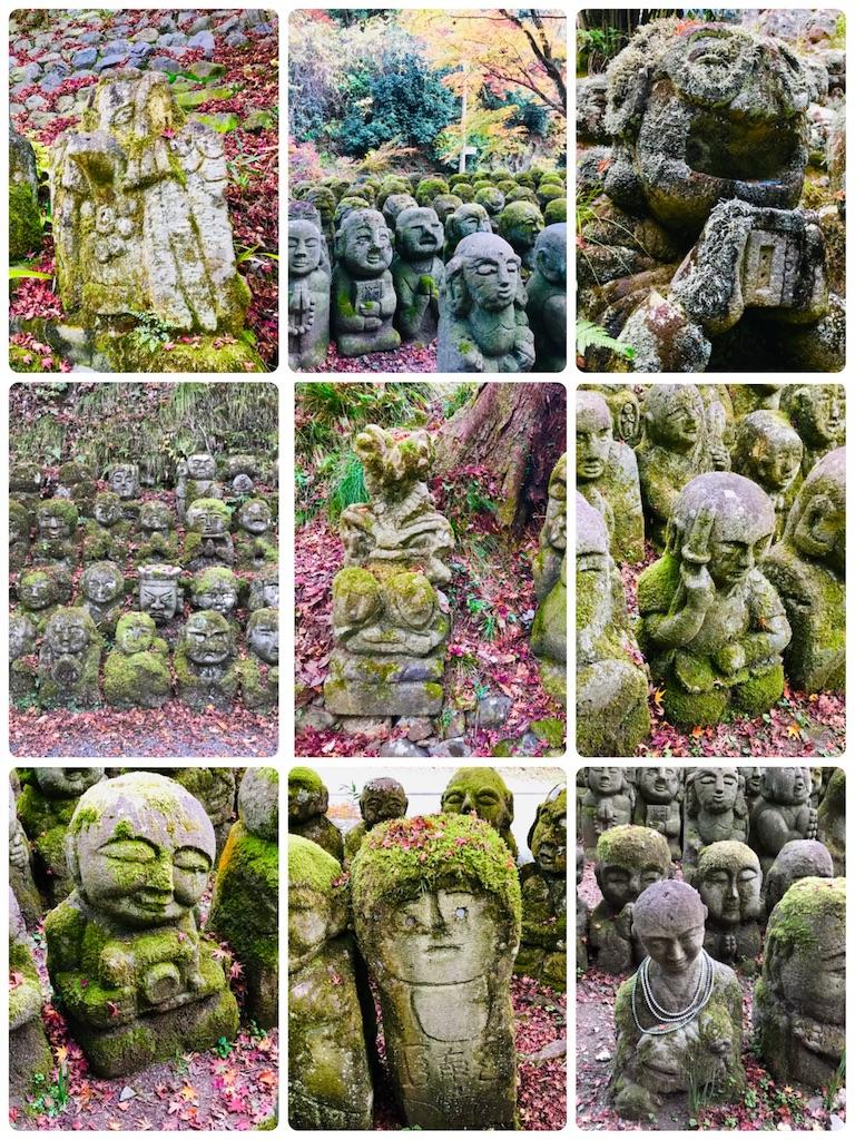 f:id:fujinosakura:20181202094924j:image