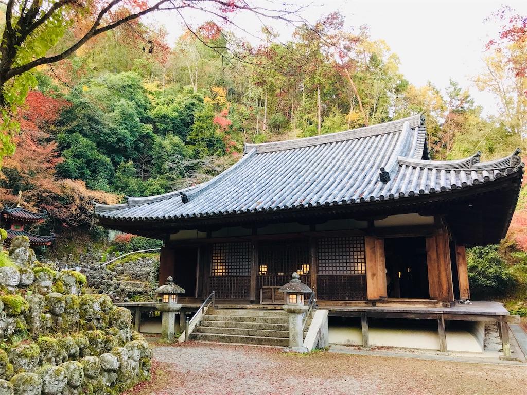 f:id:fujinosakura:20181202095149j:image