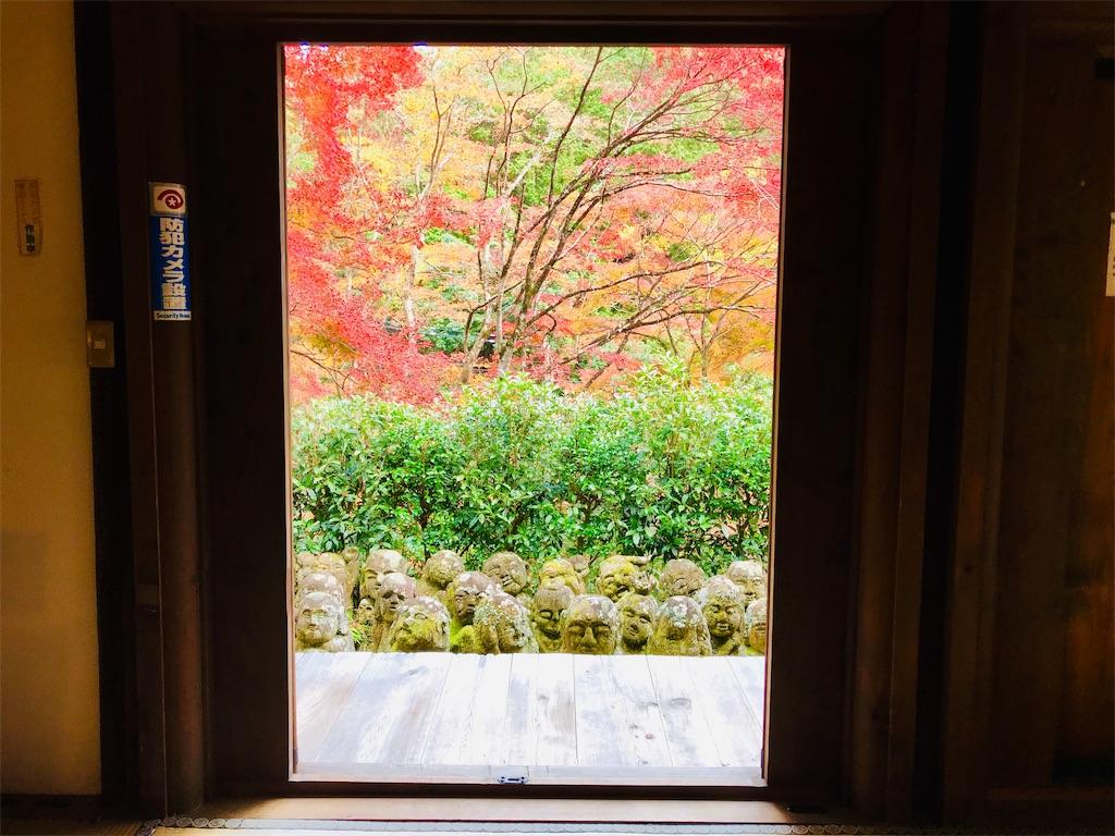 f:id:fujinosakura:20181202095153j:image