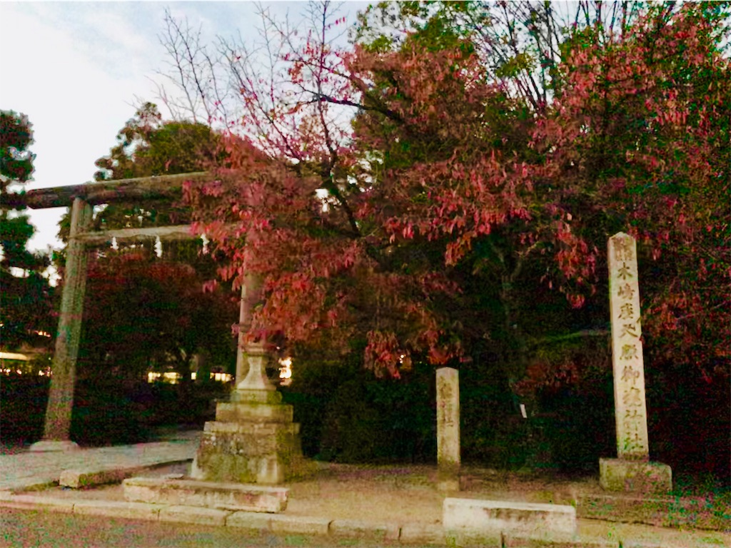 f:id:fujinosakura:20181203010037j:image