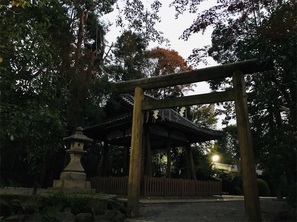 f:id:fujinosakura:20181203010229j:image